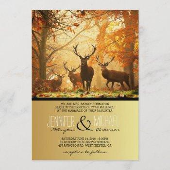deer in the autumn sun rays /wedding invitation
