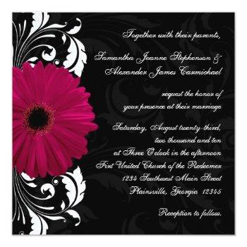 fuchsia scroll gerbera daisy w/black and white invitation