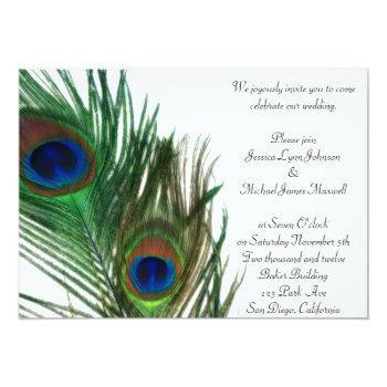 lovely and elegant white peacock wedding invitation