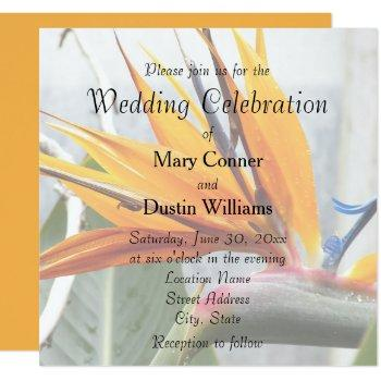 orange bird of paradise floral wedding invitation