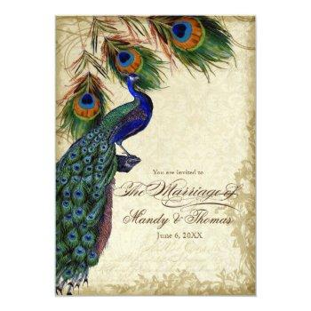peacock & feathers formal wedding tea stained invitation
