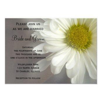 soft white daisy on gray wedding invitation
