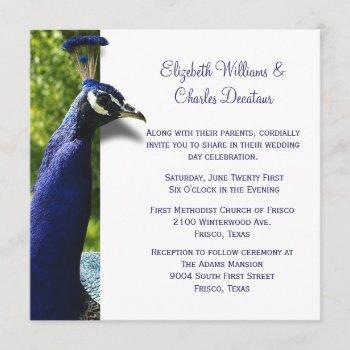 stylish peacock custom wedding invitation