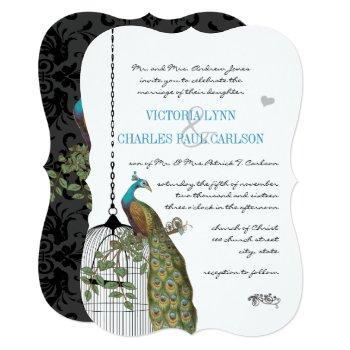 vintage bird cage peacock wedding invitations