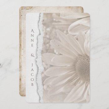 wedding daisy in sepia with torn paper edge invitation